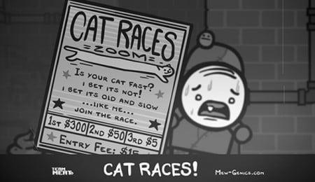 carreras de gatos en mew Genics
